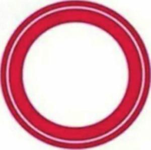 圆圈里面有一道斜杠,表示禁止长时间停放.