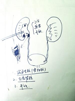 冀鲁的手绘图